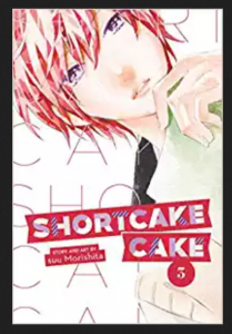 Shortcake Cake 3