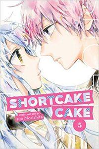 shortcake cake 5